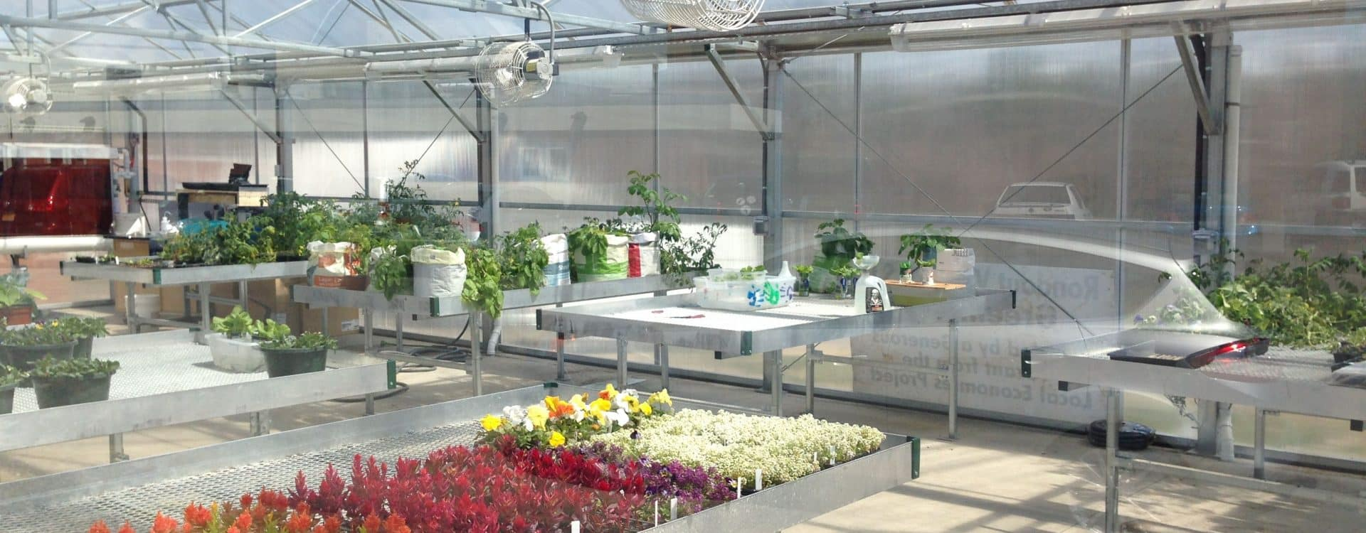 Image of green house.